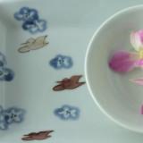 『土井善男・清水なお子 展』 ー工芸いそべー